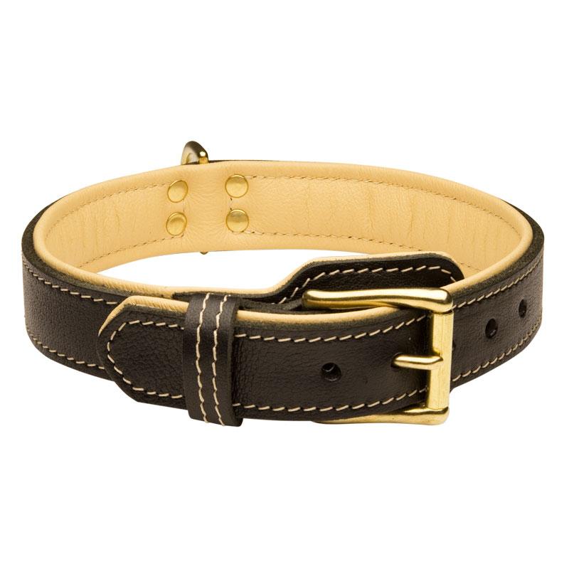 collier pour chien en cuir de luxe cadeau royal c443. Black Bedroom Furniture Sets. Home Design Ideas