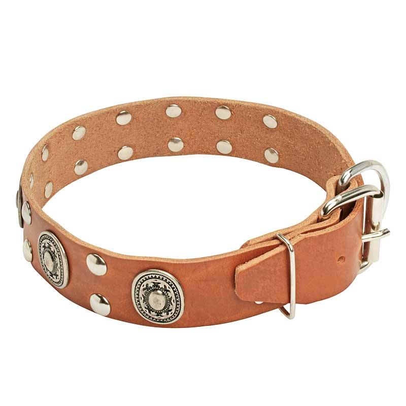 Collier de chien original guerre des vikings en cuir c13 - Collier pour chien original ...