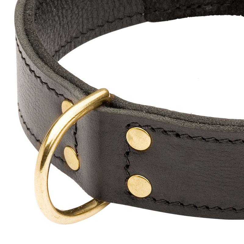 collier en cuir pour chien molosse double couche c33nh. Black Bedroom Furniture Sets. Home Design Ideas