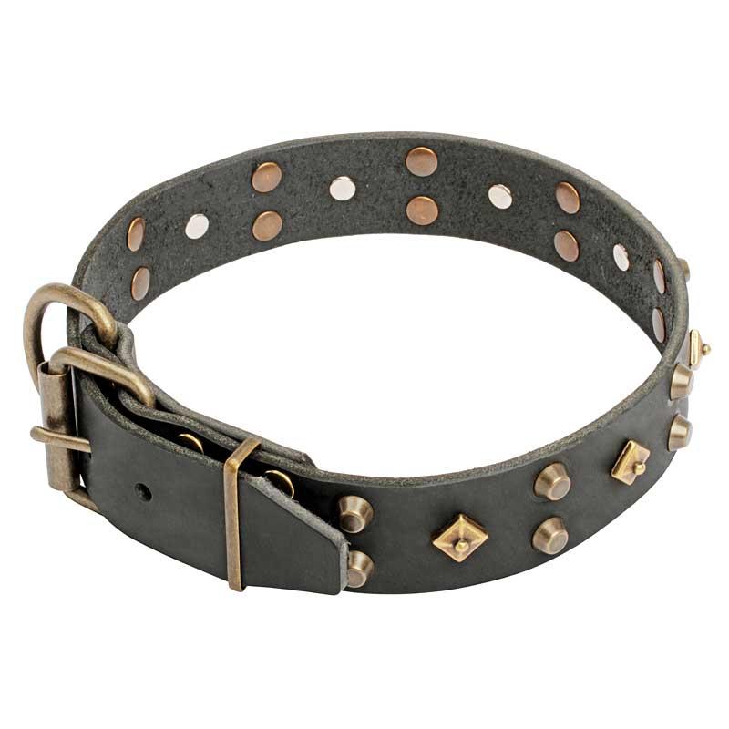 Collier original pour chien bijou tendance c17 - Collier pour chien original ...