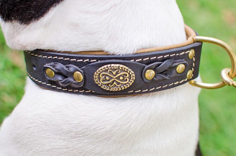 Collier cuir original pour chien staffie couvert de - Collier pour chien original ...
