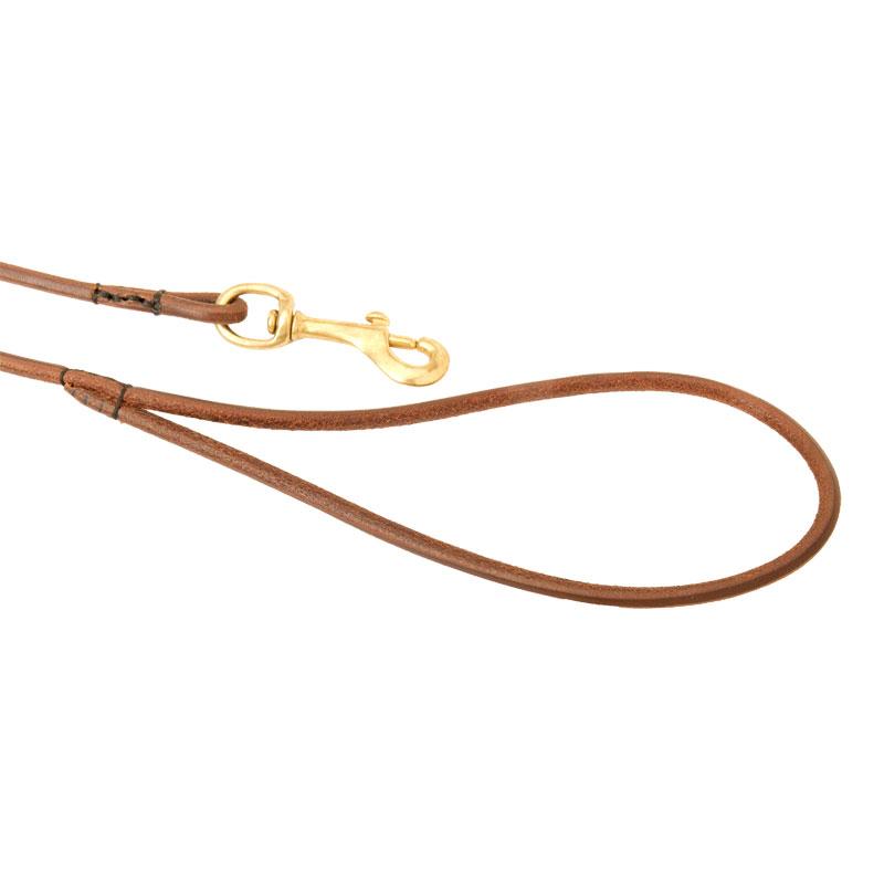 Laisse d 39 exposition en cuir pour chien exemple suivre l37 - Laisse lasso pour chien ...